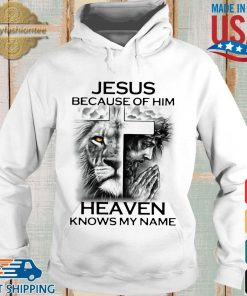 Lion Cross Jesus because of him heaven knows my name s Hoodie trang